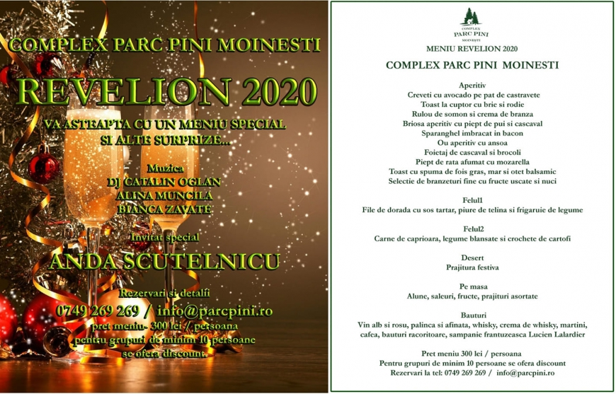 Parc Pini Moinesti - Revelion 2020