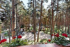 Parc Pini Complex